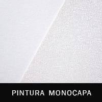 img-categoria-pintura-monocapa-1