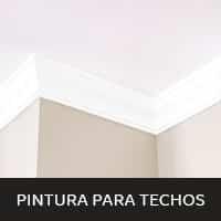 img-mini-pintura-para-techos-1