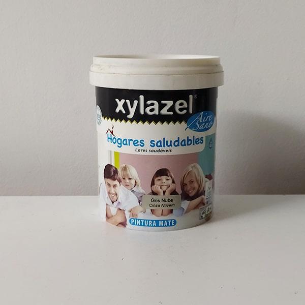 foto de pintura plástica hogares saludables Xylazel